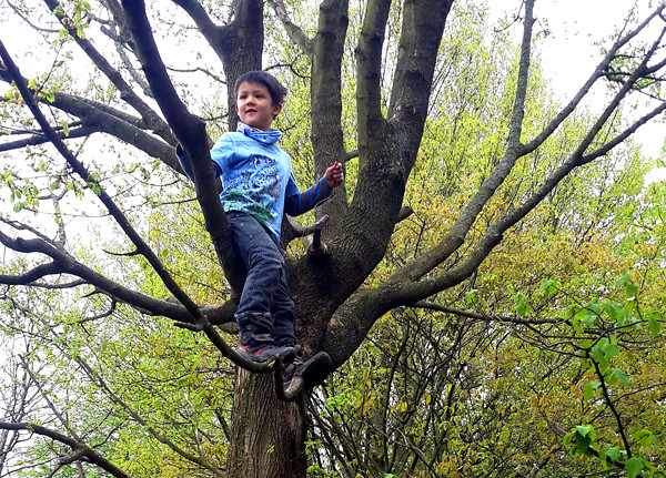 森林裡有豐富的原始素材,不論大人或孩子,都可以回歸森林學習大自然的智慧。爬上樹的恩典自信跟媽媽說:媽媽妳看我站得很高耶!