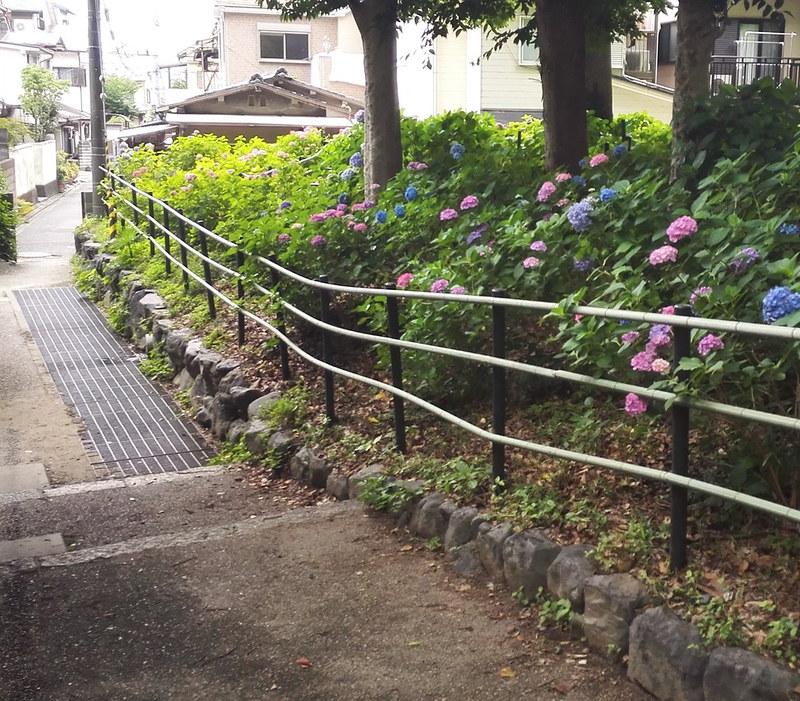 藤森神社のあじさい苑を外から見た