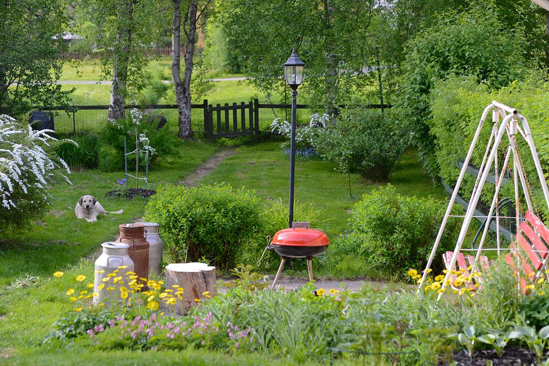 Rintamamiestalon piha, perinteisiä perennoja ja pensaita