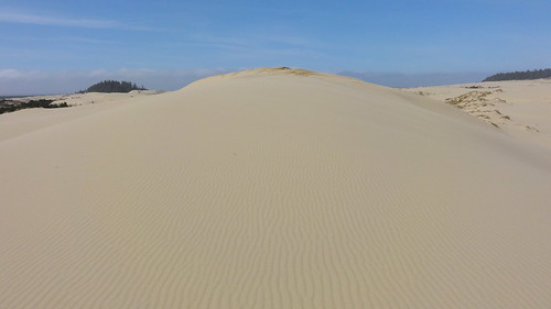 Image is looking up a dune to blue sky. The sand is rippled by the wind.