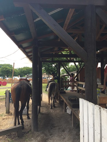 まかいの牧場