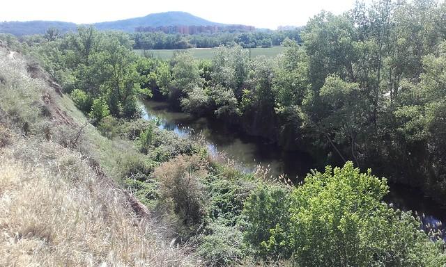 Soto del Henares (27-04-17)