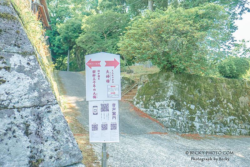 2017.Jun 武雄神社 @Saga佐賀県武雄市