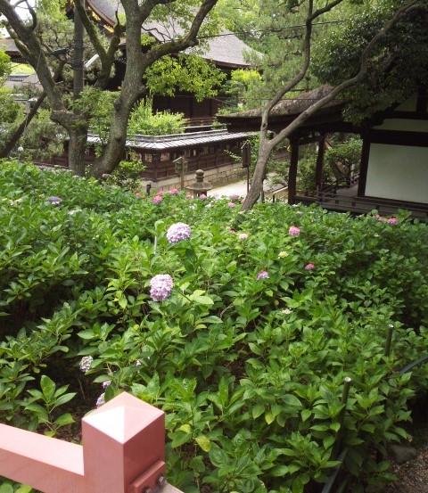 藤森神社の第二あじさい苑の欄干