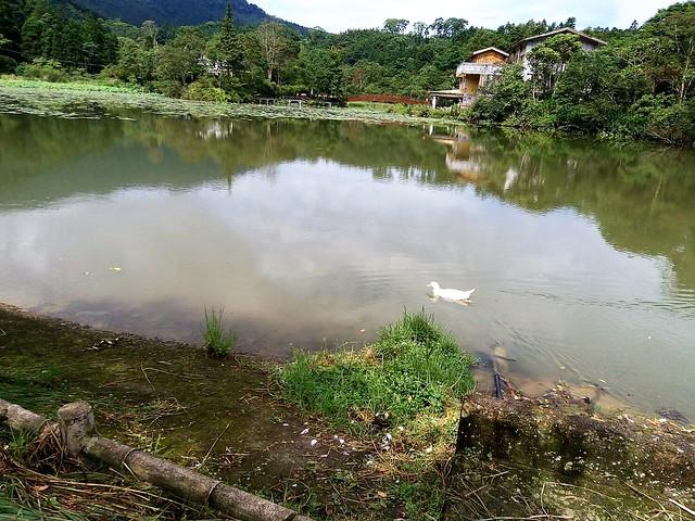向天湖 (3)