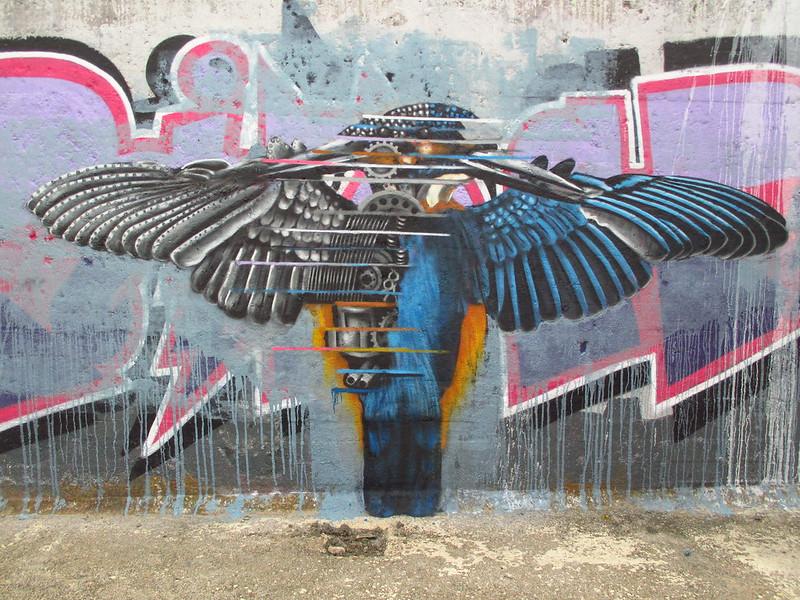 besztijsvogelduo