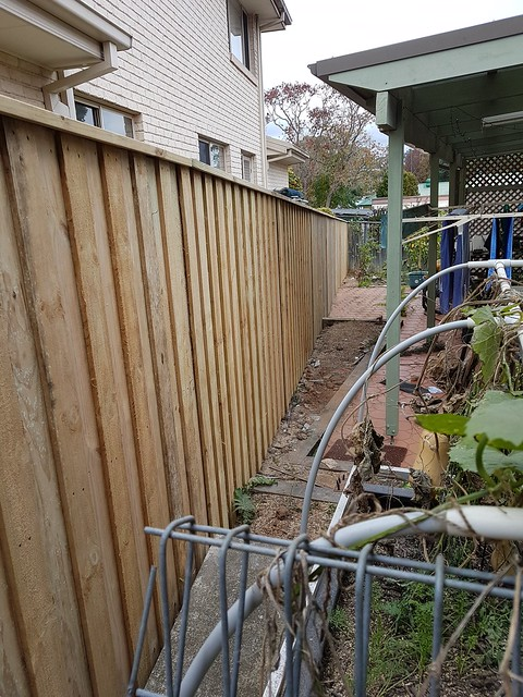 House and garden: new fence
