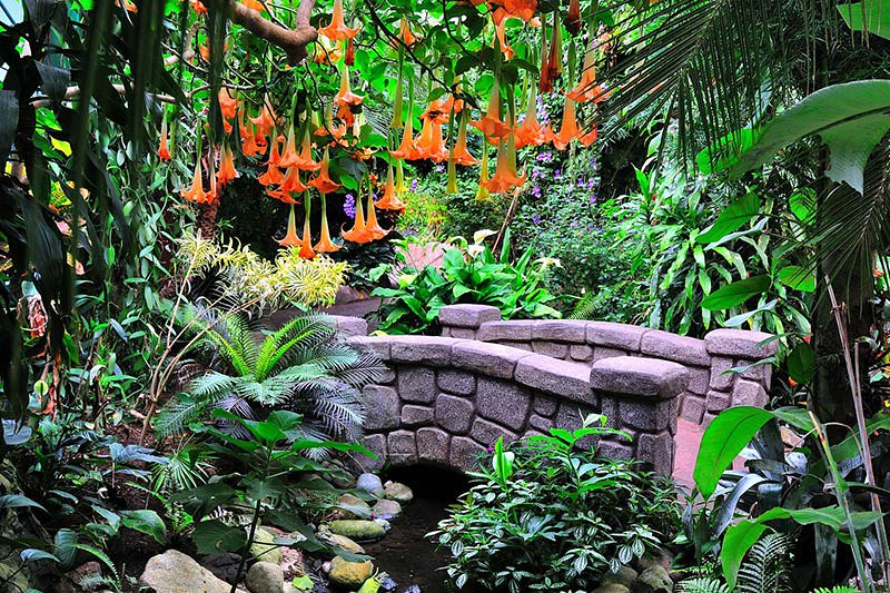 Victoria Butterfly Gardens, Butterfly Gardens, Brentwood B… | Flickr