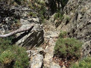 Descente de la crête Nord du CornuDellu : le couloir rocheux aménagé sous la pointe 1474