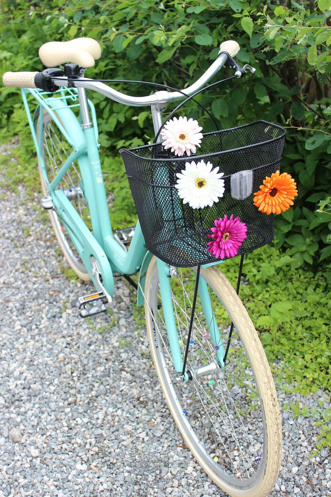 My bicycle / etdrysskanel.com