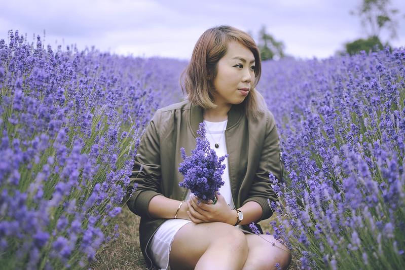 lavender dreams 15