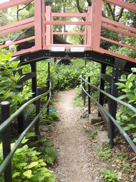 藤森神社の第2あじさい苑の橋下をくぐりぬける