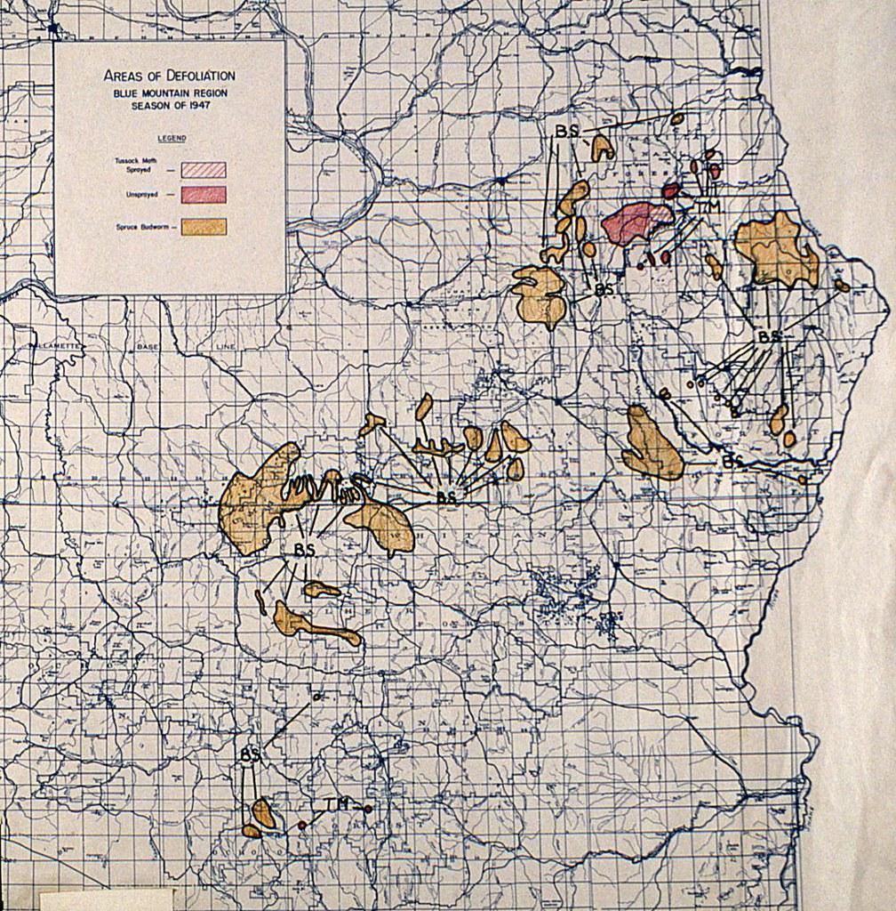 1947. Original 1947 aerial survey reporting map of the Blu… | Flickr
