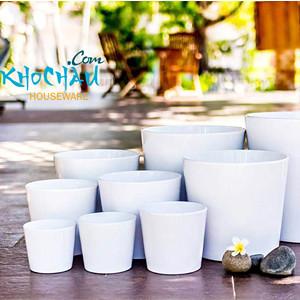 phukiencaycanh.com | chau su | chau my nghe