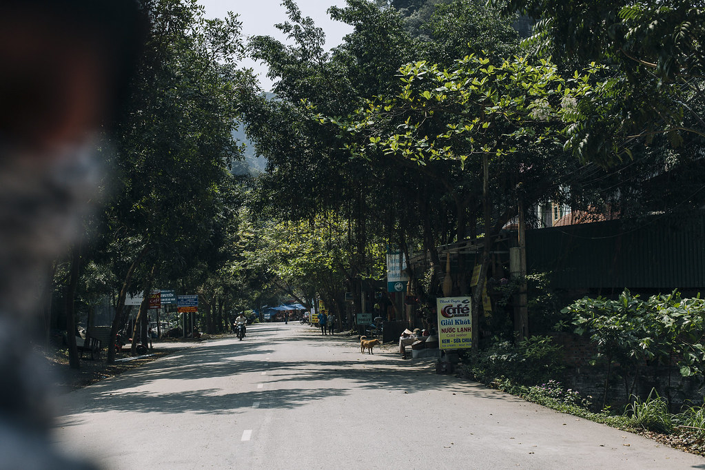 Tam_Coc_6b, Ninh Binh and Tam Coc National Park, a Photo and Travel Diary by the Blog The Curly Head, Photography by Amelie Niederbuchner,