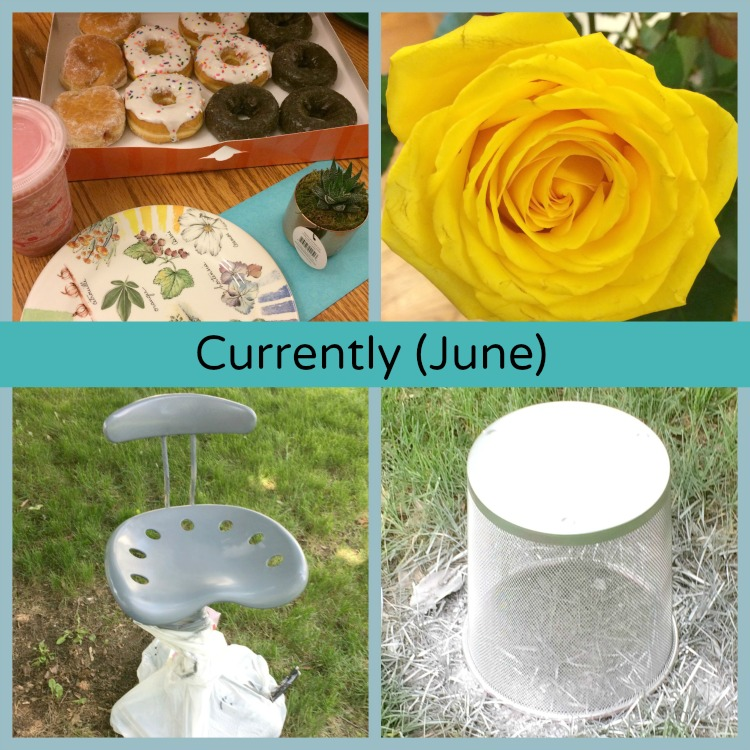 june-currently-collage-mom-home-guide