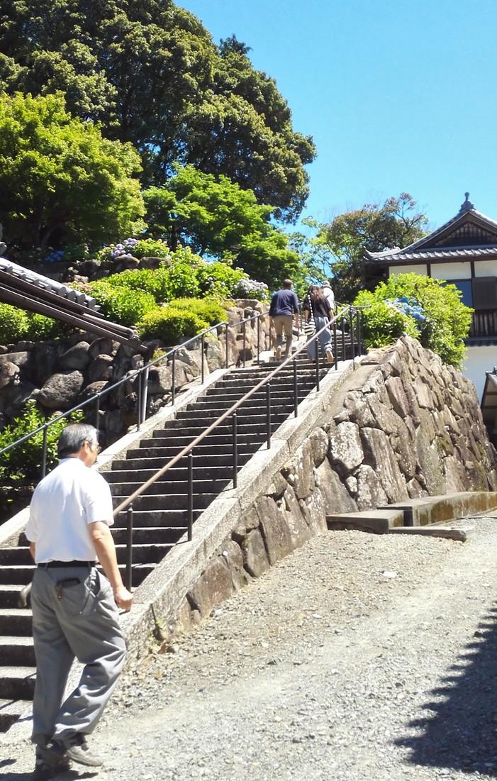 楊谷寺の入ってすぐの階段