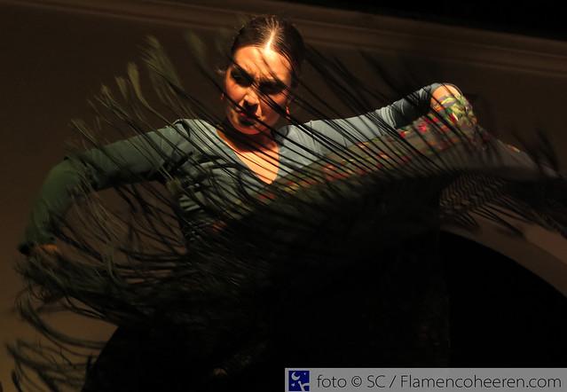 Flamenco en el Alamillo 2017. Galas de fin de curso de la Fundación Cristina Heeren [21 junio]