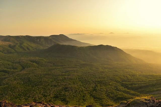 朝日に染まる霧島山の森