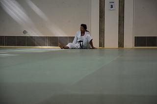 Swiss Ju-Jitsu Day 2017