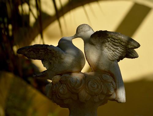 Stone doves