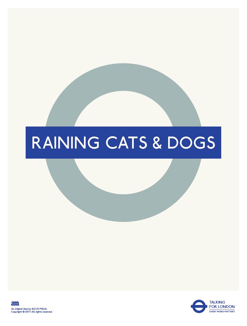 RAINING CATS & DOGS (TFL) AM