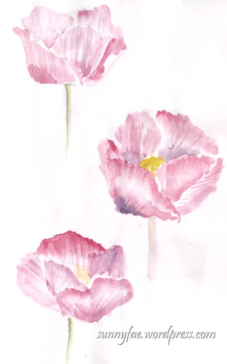 3 waterclolur pink poppies