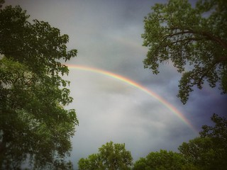 Rainbow | by vwcampin