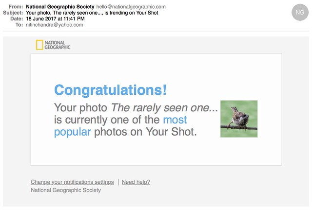 Your photo The rarely seen one is trending on Your Shot