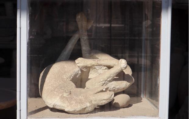 Kipsivalos koirasta Pompeijissa