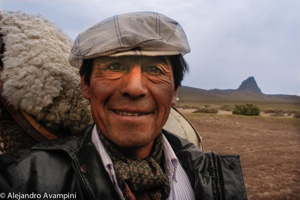 Paisano Patagonico