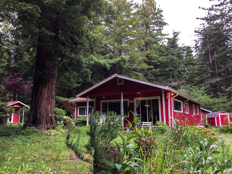 Casa en Trinidad - A house in Trinidad - California - Sequoias
