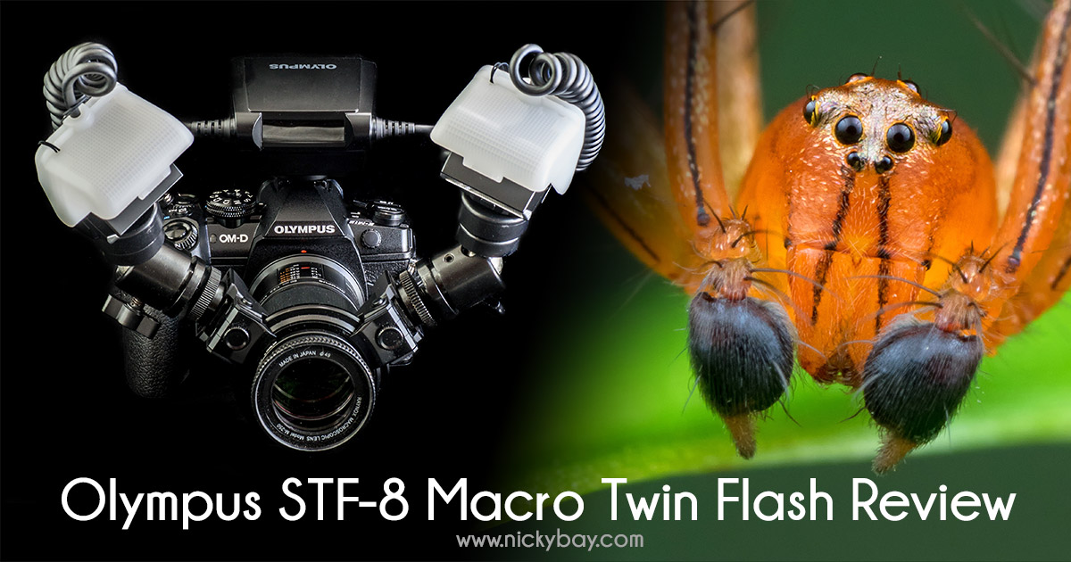 Olympus STF-8 Macro Twin Flash Review