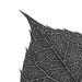 Blog040617-Leaves-LND-Jun16-38