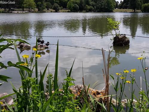 Lac Daumesnil - Bois de Vincennes