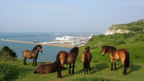 Walk back from Dover