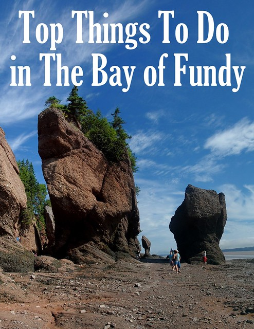 Top Things To Do in The Bay of Fundy