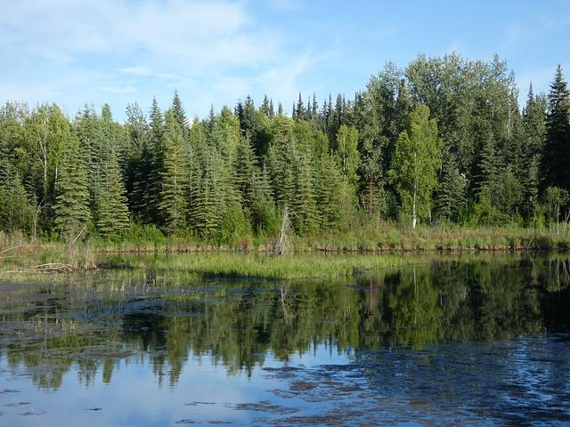 Chena River (Alaska)