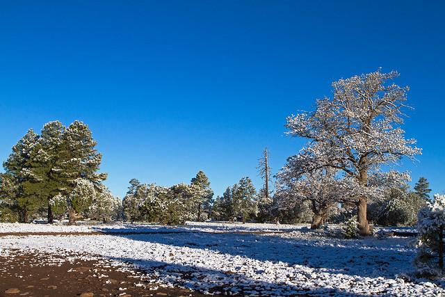 Snow-10-7D1-051917