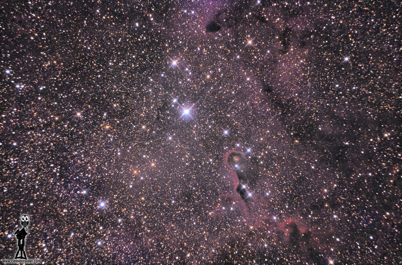 """IC1396 - Nebulosa de la """"trompa del elefante"""""""