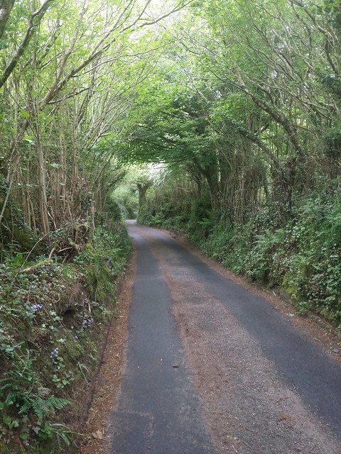Road to Chagford