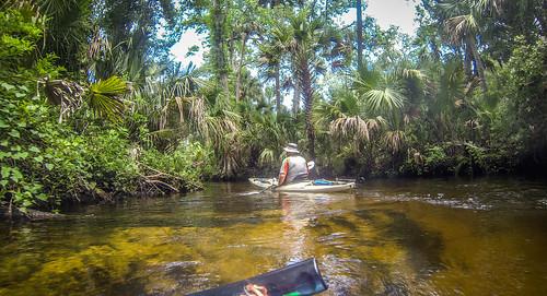 Juniper Springs Creek-9