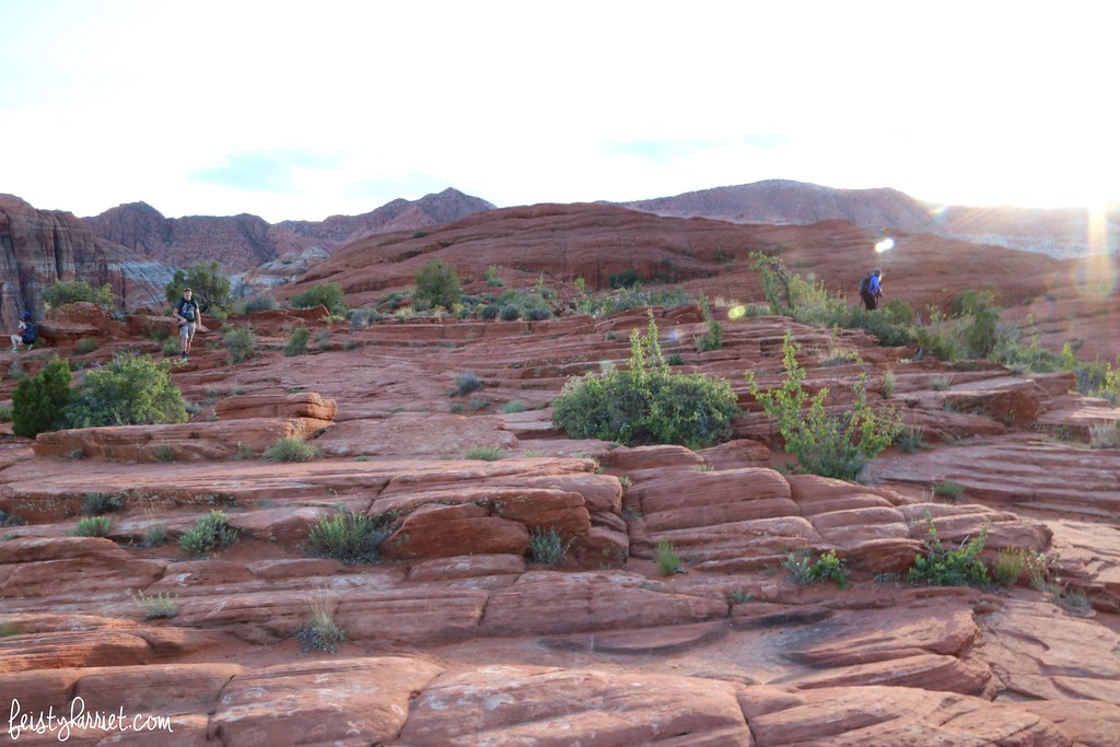 Snow Canyon State Park_feistyharriet_InstaMeet St George_May 2017 (11)