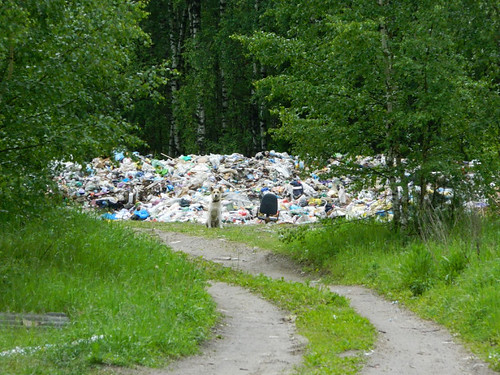 У нас в районе мусора нет