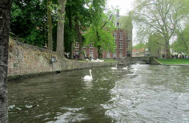 Side Bridge and Swans, Bruges