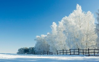 Snow Wallpapers 1 | by mountwall