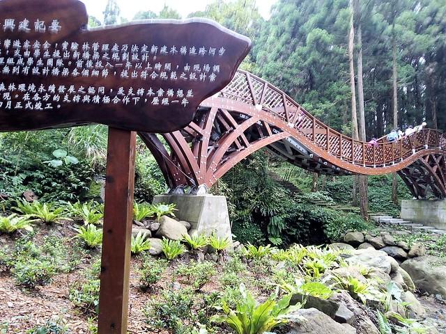 溪頭新建的銀杏橋 (8)