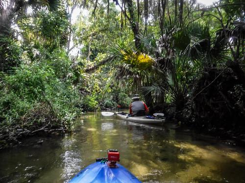 Juniper Springs Creek-99