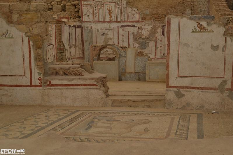 Mosaicos y pinturas en las Casas de las Terrazas