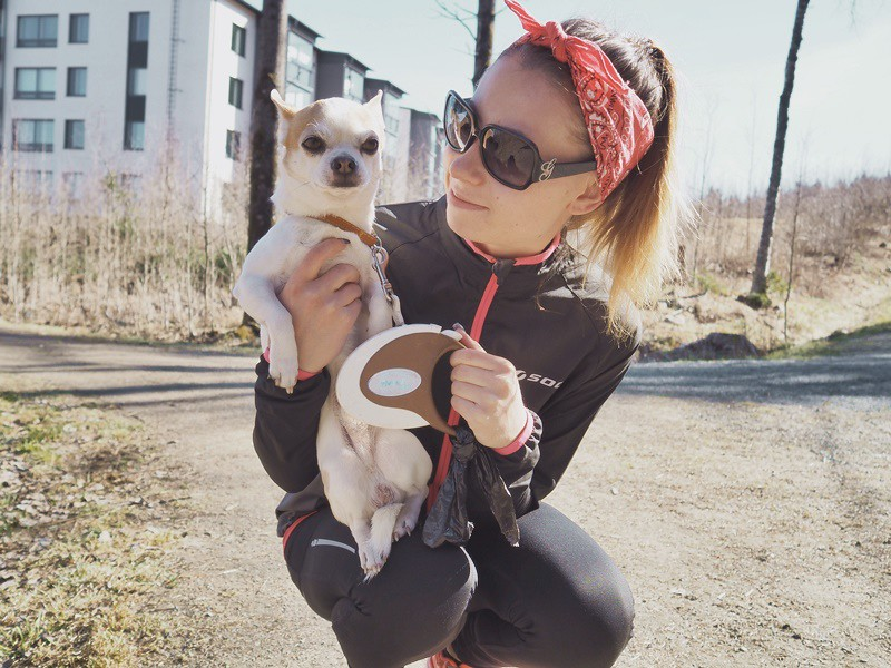 chihuahua-katzariina-kuopio-bloggaaja-soc